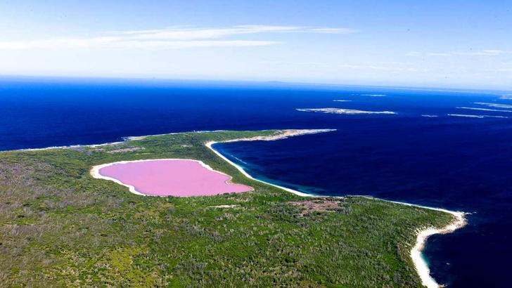 Фото №1 - Мир в розовом цвете: 11 необычных явлений природы