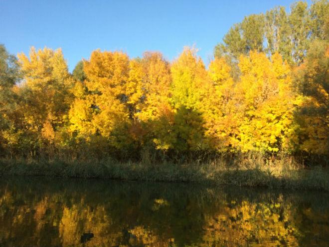Фото №4 - 10 мест в Астрахани, где осенью – настоящая сказка!