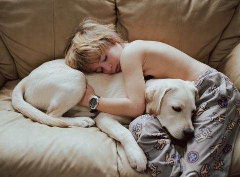 Фото №2 - Купите мне собаку!
