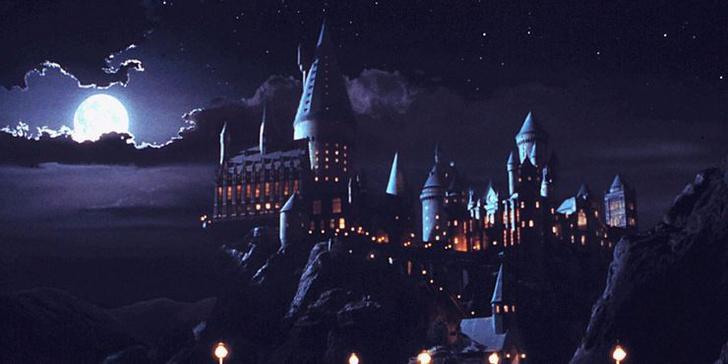 Фото №5 - «Гарри Поттер»: 10 классных идей для новых спин-оффов