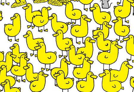 Загадка только для людей с большим глазомером: найди цыпленка