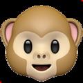 Фото №1 - Гадаем на обезьянках: Какую новость тебе ждать сегодня?