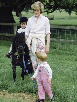 Фото №2 - «Оставьте Диану в покое!»: как Сассекские продолжают зарабатывать на памяти принцессы Уэльской