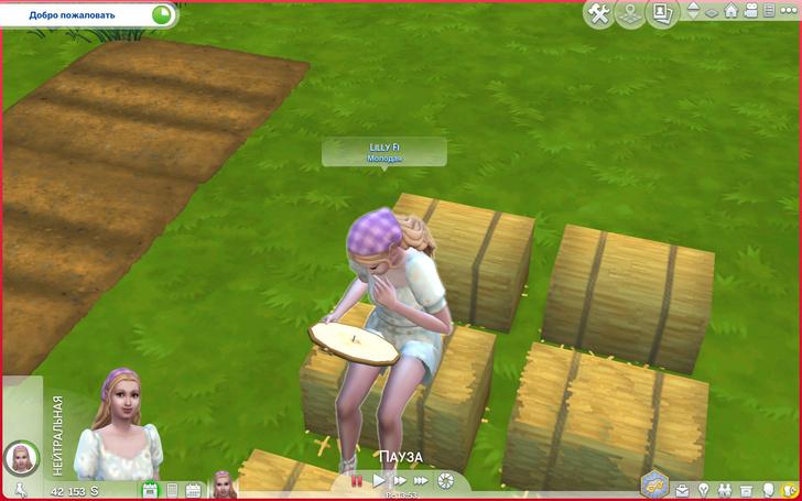 Фото №5 - Скорее качай: новое дополнение «Sims 4: Загородная жизнь» уже доступно ✨