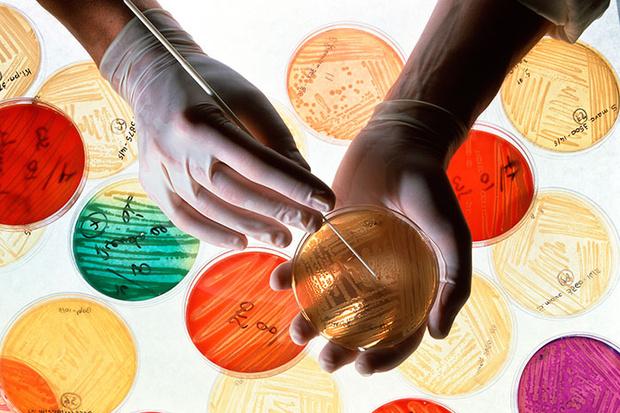 Фото №1 - 10 самых современных медицинских исследований
