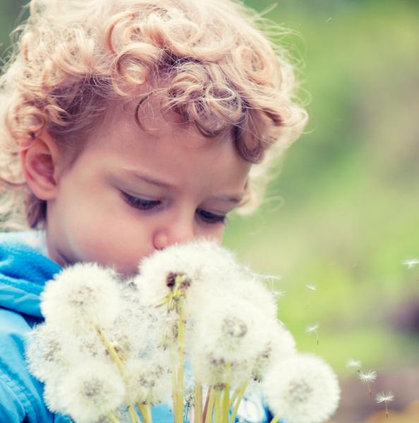 как обезопасить дачный участок для ребенка