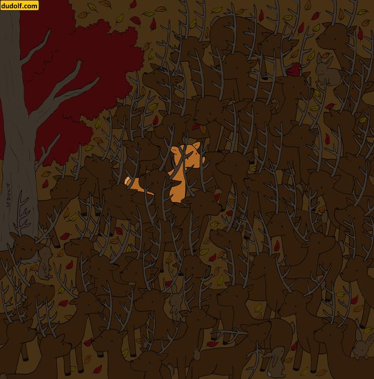 Фото №5 - Загадка для глаз: отыщи олениху среди оленей